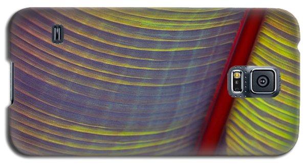 Banana Leaf 8597 Galaxy S5 Case