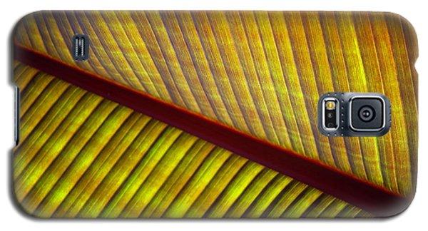Banana Leaf 8603 Galaxy S5 Case