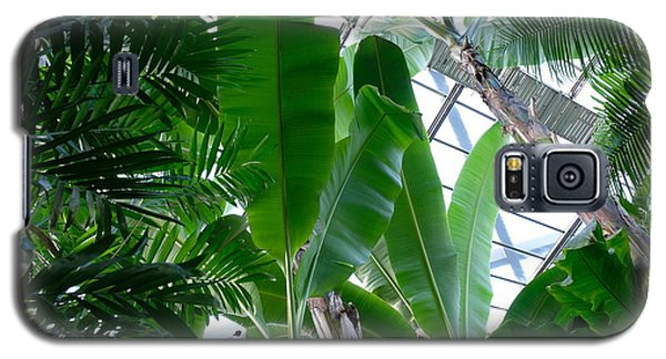 Banana Leaves In The Greenhouse Galaxy S5 Case