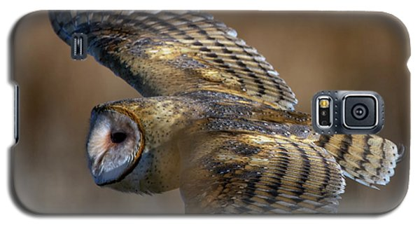 Barn Owl In Flight Galaxy S5 Case