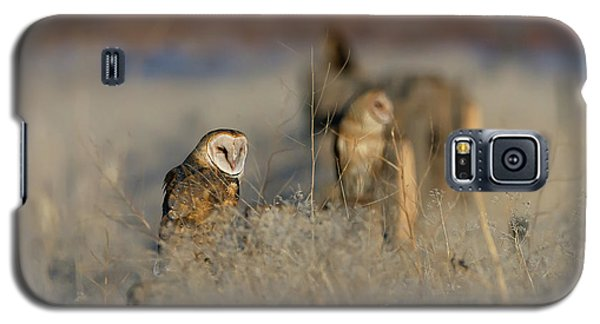 Barn Owls 9 Galaxy S5 Case