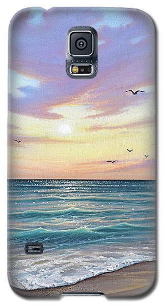 Basking In The Sunset Galaxy S5 Case