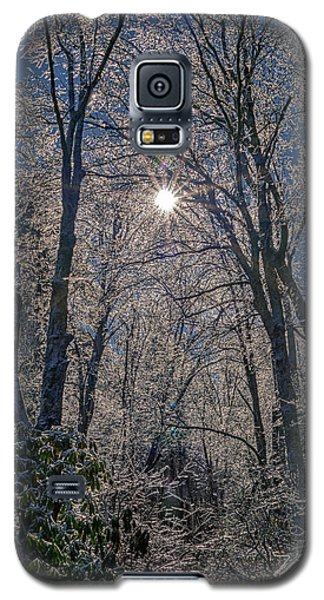 Bass Lake Frosty Galaxy S5 Case