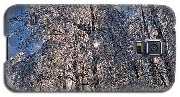 Bass Lake Trees Frozen Galaxy S5 Case