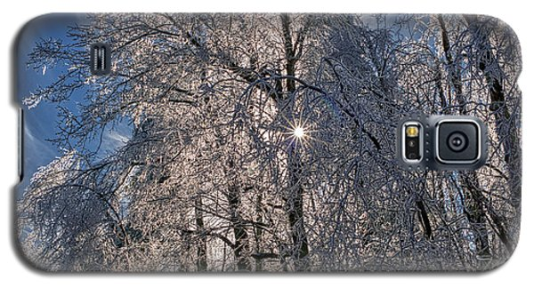 Bass Lake Trees Frozen Galaxy S5 Case