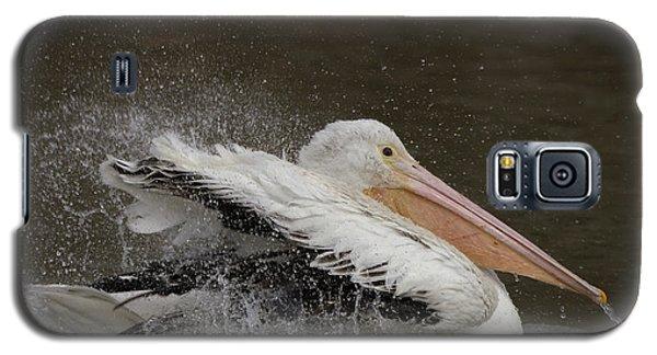 Bathing Pelican Galaxy S5 Case
