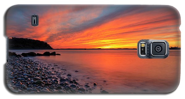 Beach Fury Galaxy S5 Case