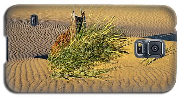 Beachgrass And Ripples Galaxy S5 Case