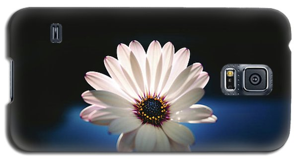 Beautiful And Delicate White Female Flower Dark Background Illum Galaxy S5 Case