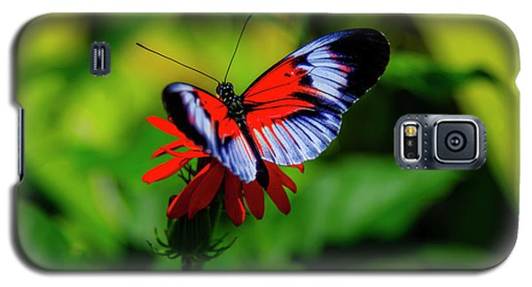 Beautiful Butterfly Galaxy S5 Case