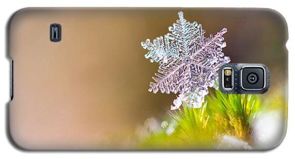 Cold Galaxy S5 Case - Beautiful Close Up Image Of A Snowflake by Dennis Van De Water
