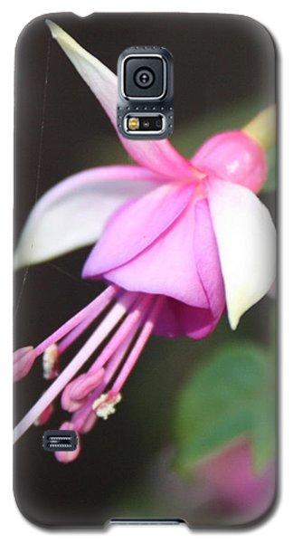 Beautiful Fuchsia Galaxy S5 Case