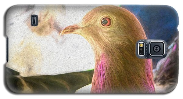 Beautiful Homing Pigeon Painted Galaxy S5 Case
