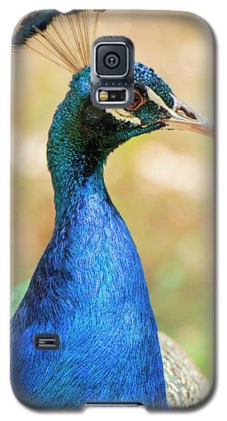 Beautiful Peacock Galaxy S5 Case