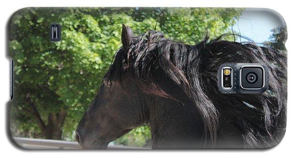 Beauty In Motion Galaxy S5 Case