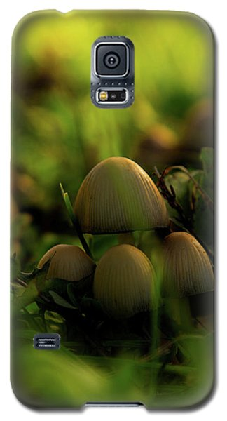 Beauty Of Fungus Galaxy S5 Case