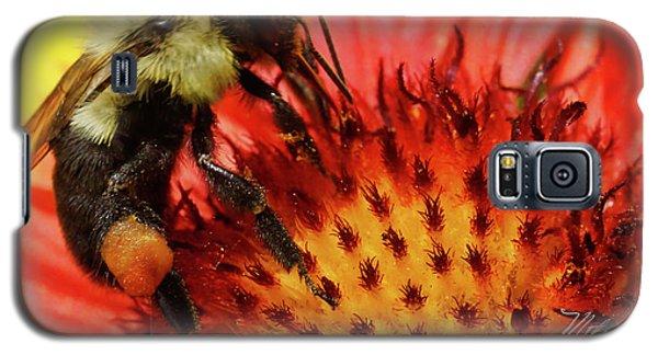 Bee Red Flower Galaxy S5 Case