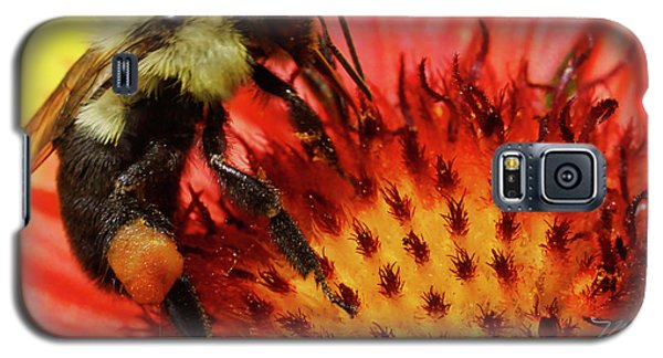 Bee Red Flower Galaxy S5 Case