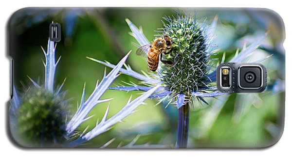 Bee's Got The Blues Galaxy S5 Case