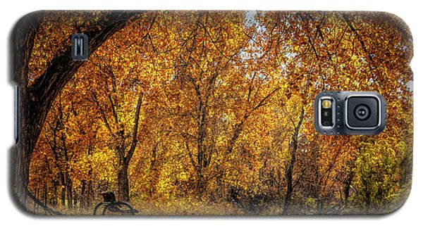 Bench With Autumn Leaves  Galaxy S5 Case