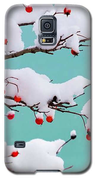 Berries And Cream Galaxy S5 Case