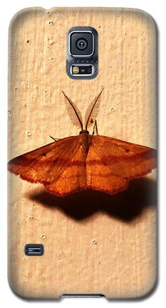 Bertrand Galaxy S5 Case