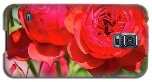 Best Buds In Red Galaxy S5 Case