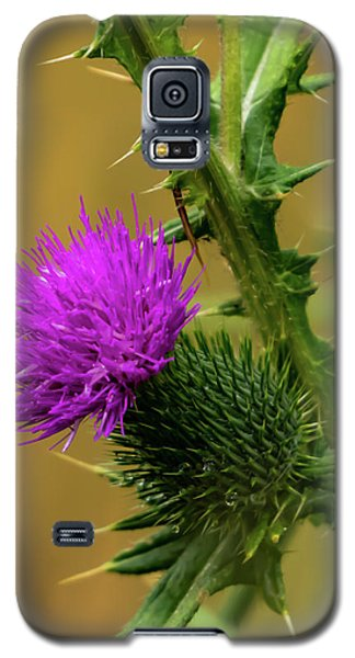 Between The Flower And The Thorn Galaxy S5 Case