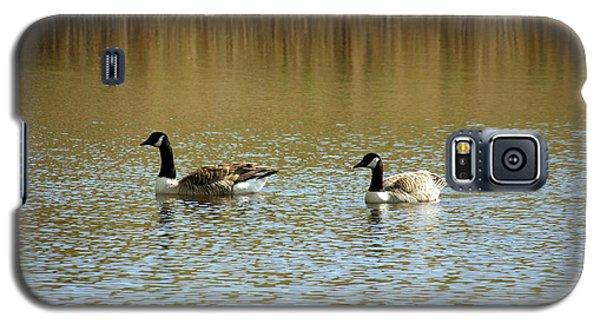 Bidston.  Bidston Moss Wildlife Reserve. Two Geese. Galaxy S5 Case