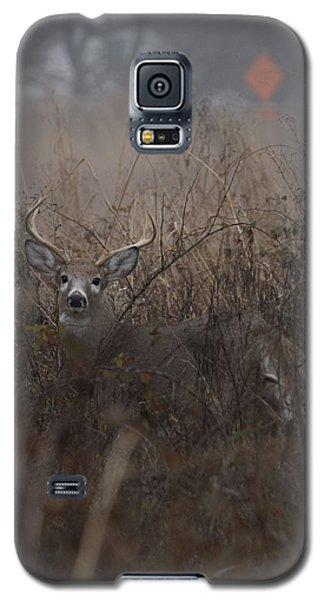 Big Buck Galaxy S5 Case