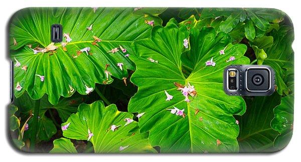 Big Green Leaves Galaxy S5 Case