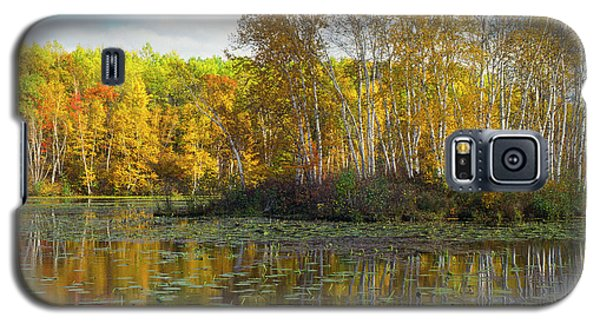 Birch Island Galaxy S5 Case