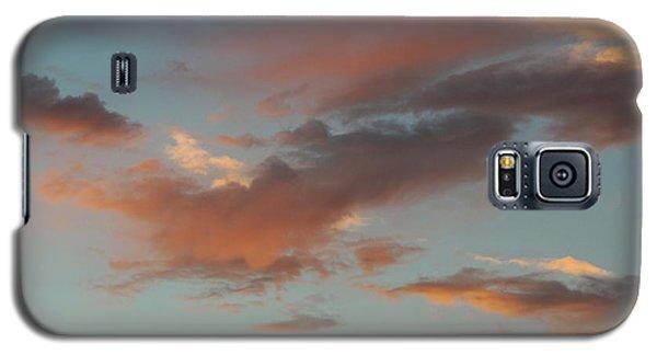 Bird Clouds Galaxy S5 Case