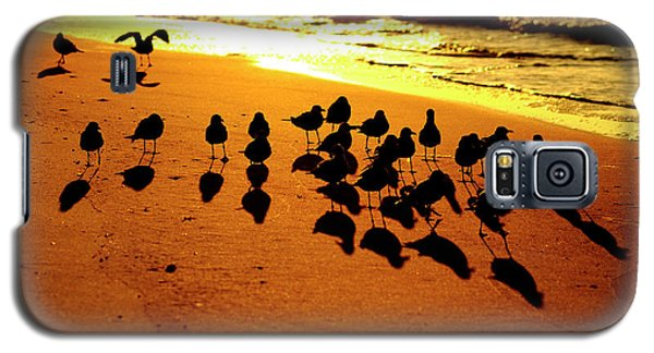 Bird Shadows Galaxy S5 Case