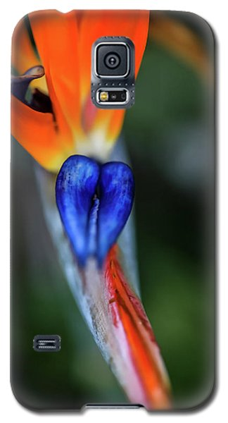 Birds Of Paradise Up Close Galaxy S5 Case