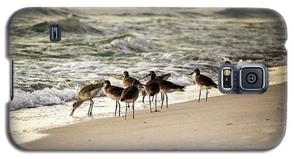 Birds On The Beach Galaxy S5 Case