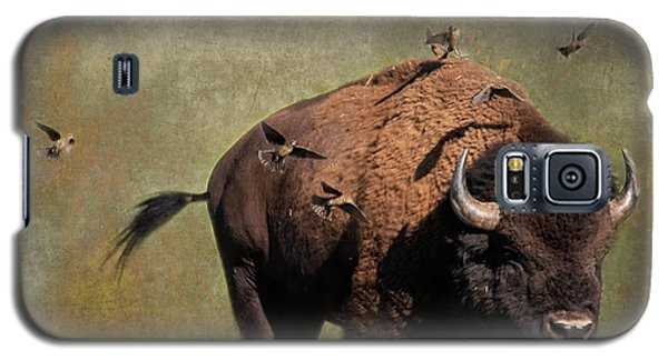 Bison And Friends Galaxy S5 Case