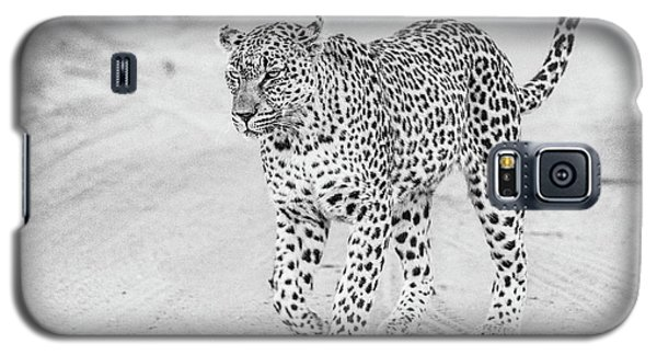 Black And White Leopard Walking On A Road Galaxy S5 Case