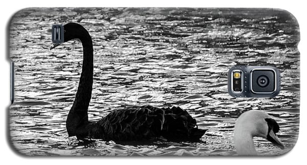 Black And White Swans Galaxy S5 Case