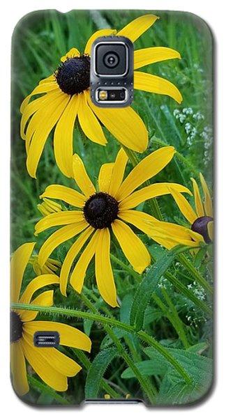 Black Eyed Susans 1 Galaxy S5 Case