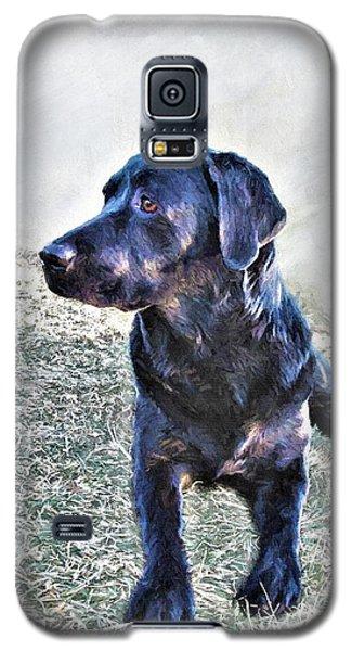 Black Labrador Retriever - Daisy Galaxy S5 Case