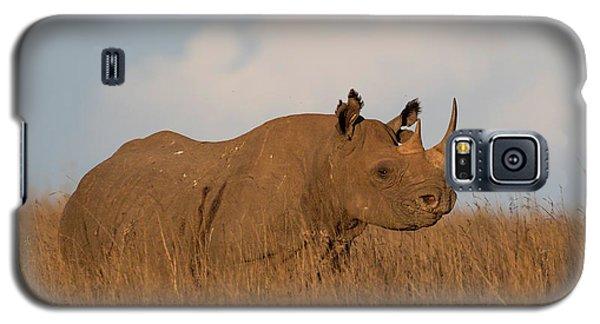Black Rhino Galaxy S5 Case