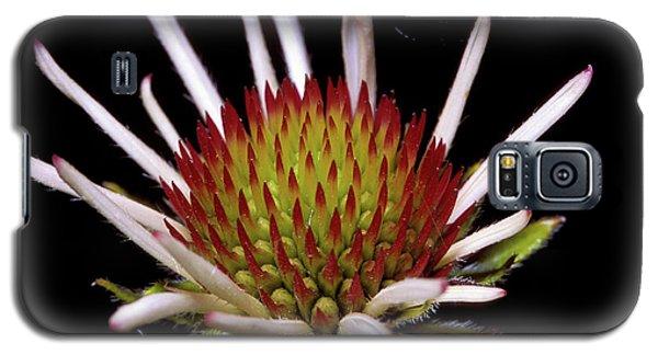 Black Sampson Galaxy S5 Case