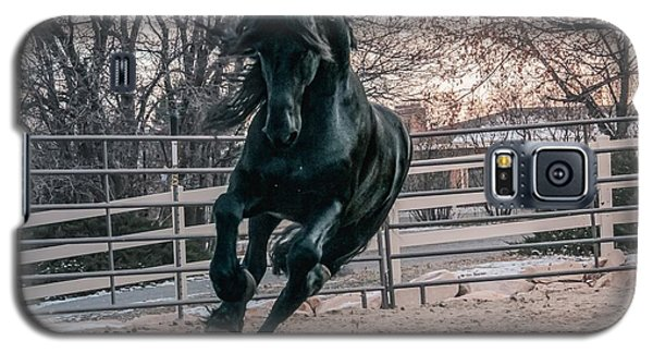 Black Stallion Cantering Galaxy S5 Case