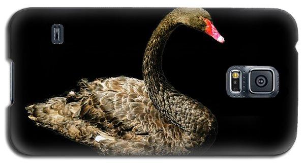 Black Swan On Black  Galaxy S5 Case