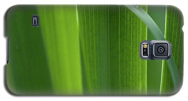 Blades 8587 Galaxy S5 Case