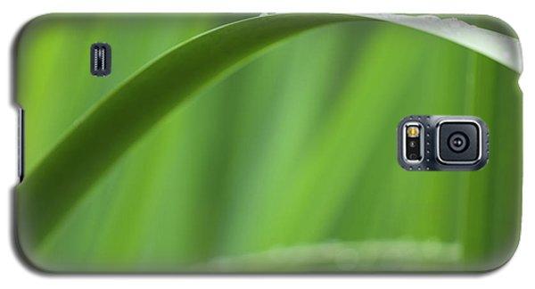 Blades 8594 Galaxy S5 Case