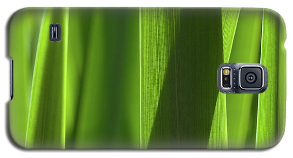 Blades 8851 Galaxy S5 Case
