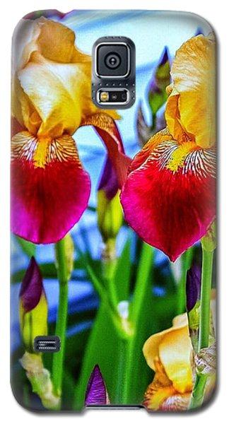 Blatant Iris Galaxy S5 Case