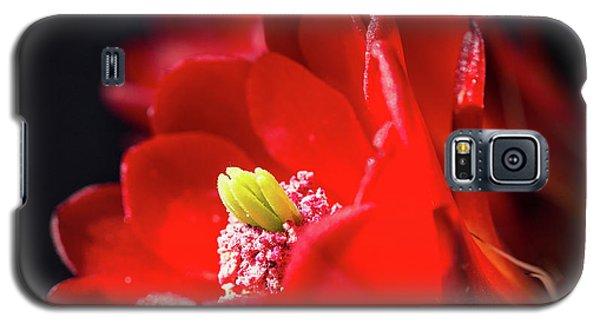 Bloomin' Hedgehog Galaxy S5 Case